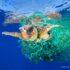 WWF-Việt Nam kêu gọi nâng cao ý thức và trách nhiệm giảm thiểu rác thải nhựa